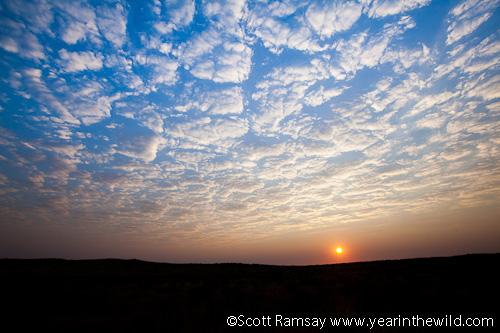 Sunrise in the Kgalagadi