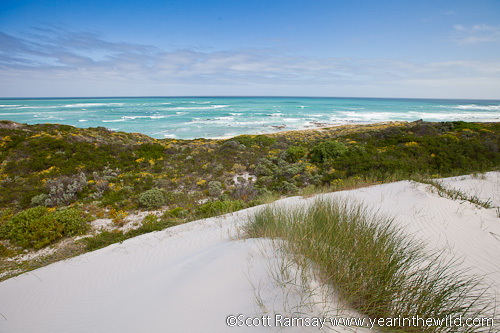 Cape Agulhas shoreline
