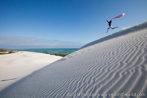 Cape Agulhas Dunes