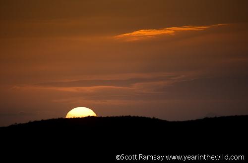 De Hoop sunset...
