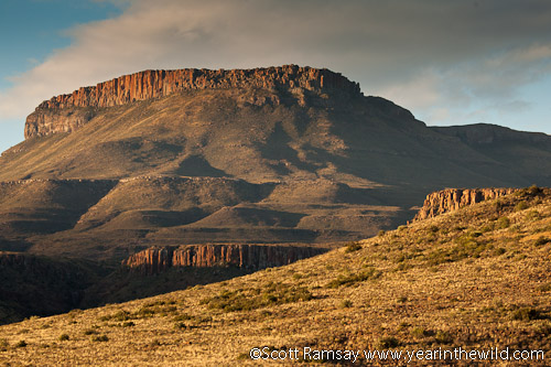 The koppies of the Karoo are famous...the geology is fascinating, even for non-geologists.