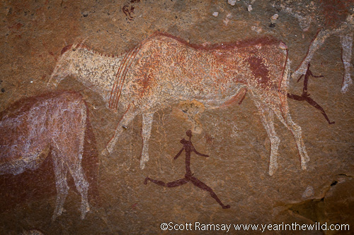 the rock art and paintings of africa Sites in africa featuring rock art include:  the oldest firmly dated rock-art painting in australia is a charcoal drawing on a rock fragment found .