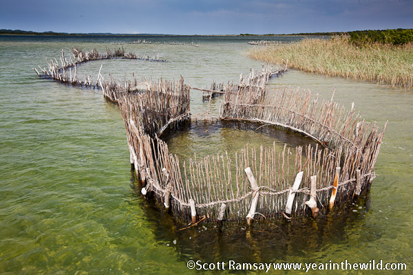 The fish traps of Kosi Bay