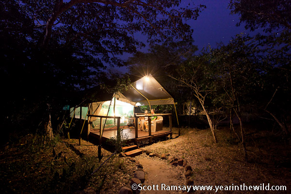 The comfortable tents at Tembe Lodge
