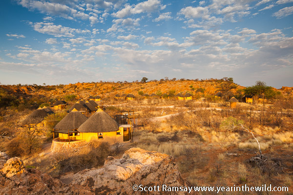 The Wild Side Of Mapungubwe And The Challenges Of