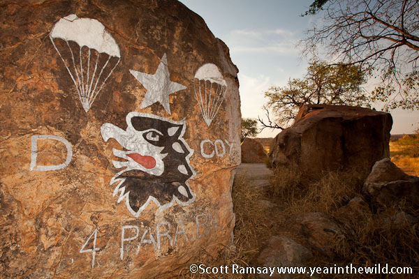 Marvelous Mapungubwe Year In The Wild