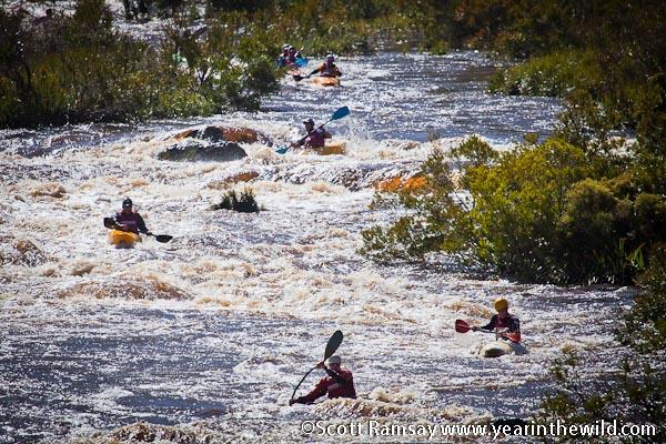 Palmiet River