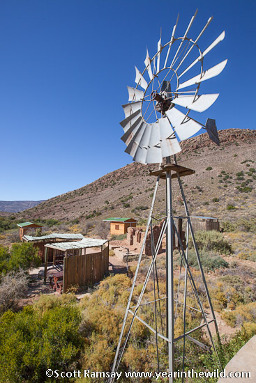 Tapfontein, the small camp in the north of Anysberg Nature Reserve where horse trailists, mountain-bikers and 4x4ers can overnight. There is a lovely reservoir to swim in - very important during summer!