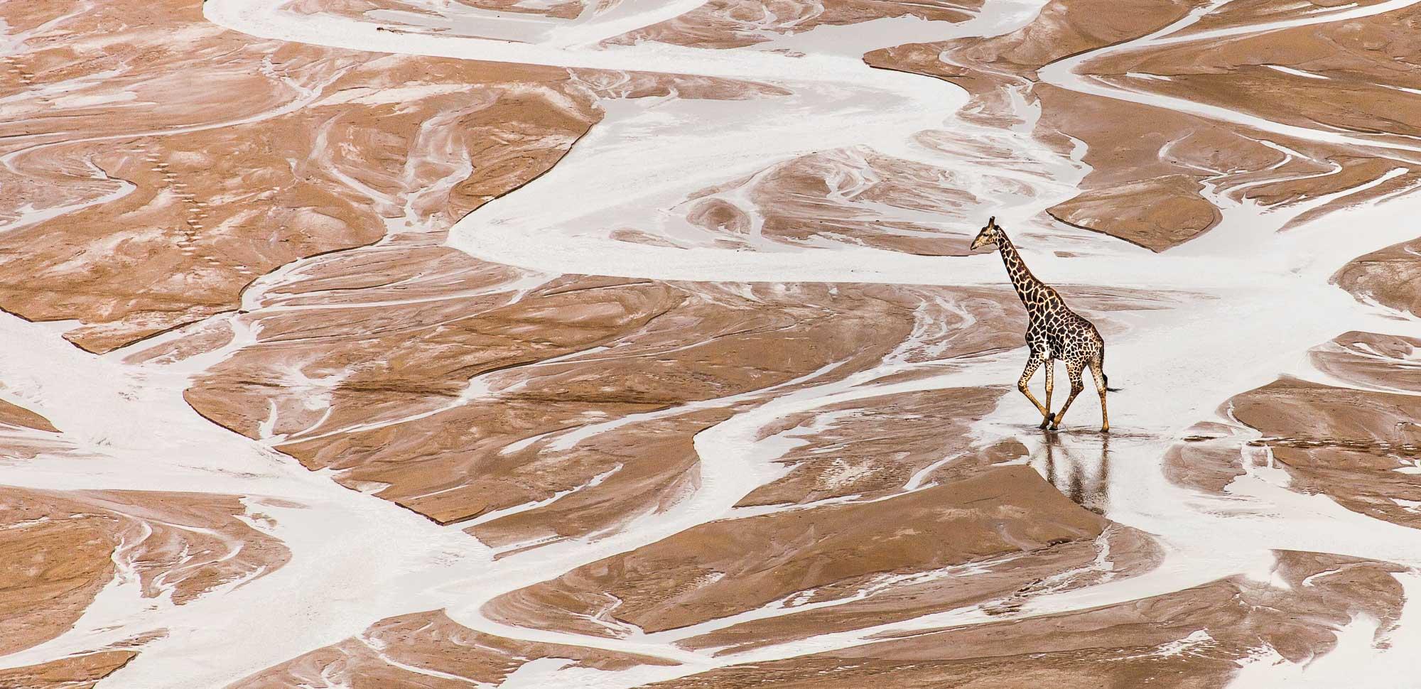 Hluhluwe-Imfolozi Game Reserve - KwaZulu Natal - South Africa