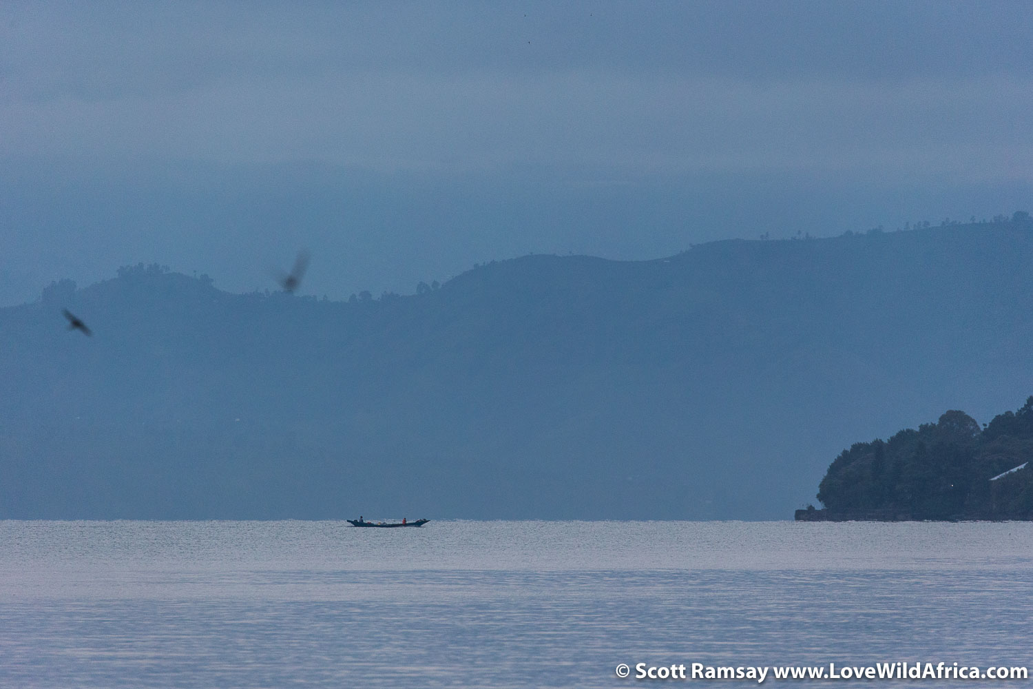 Early morning view from Lac Kivu Lodge. of a fishing boat coming back into Goma.