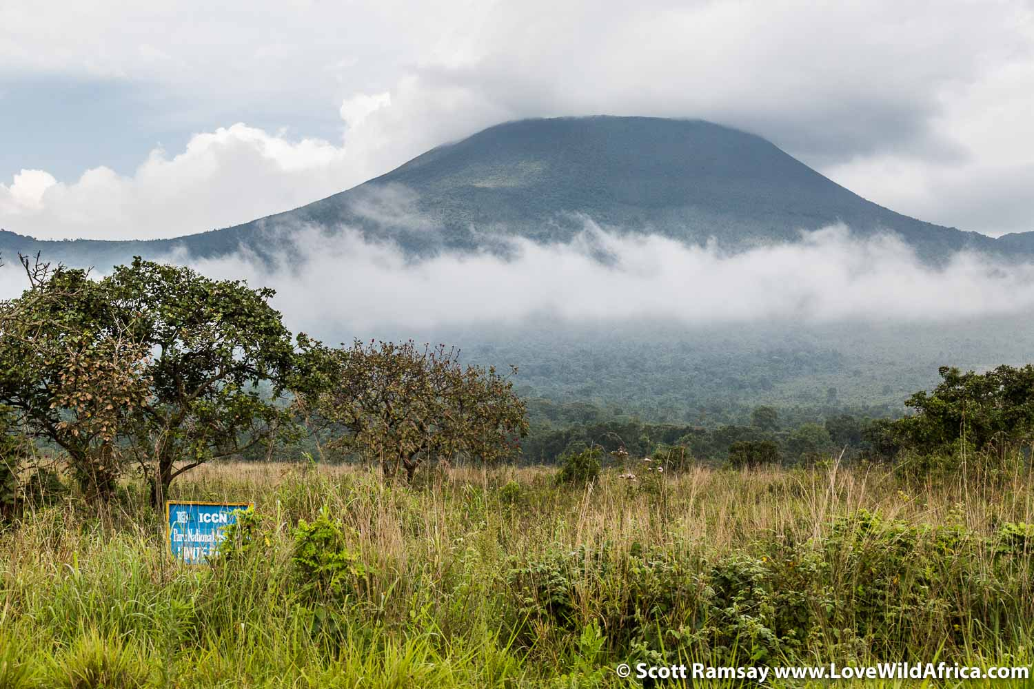 "Virunga is an apt name for the mountains and the park. The name comes from ""ibirunga"", which means ""volcanoes"" in the Kinyarwanda language. This is Mount Nyiragongo (3 470 metres), seen from the road between Goma and Rumangabo, the park headquarters."