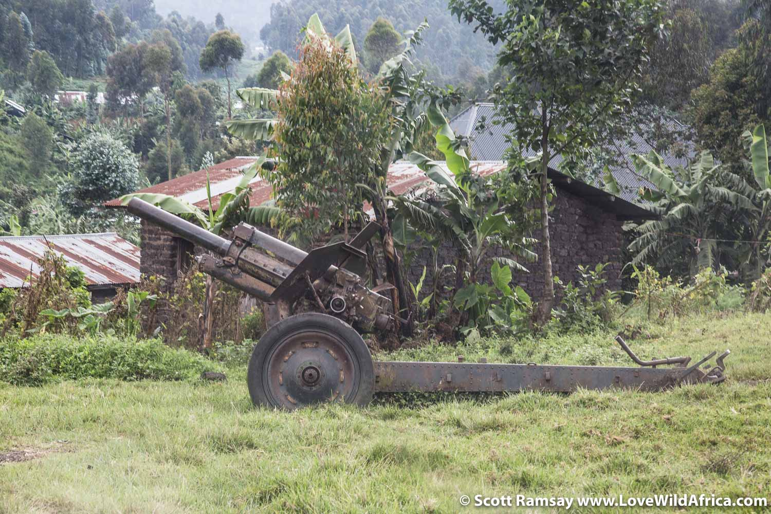 There are constant reminders of the region's warring past. This cannon is on the road from Goma to Rumangabo.