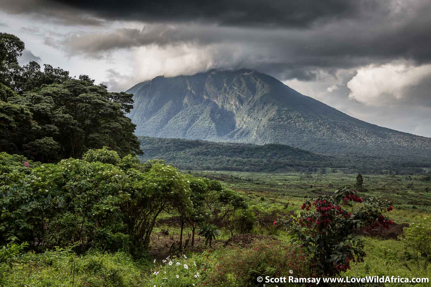 Mount Mikeno in the southern sector of Virunga National Park, as seen from Bukima.
