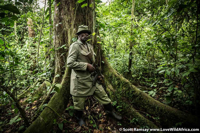 Ranger Matias Matey, Virunga National Park