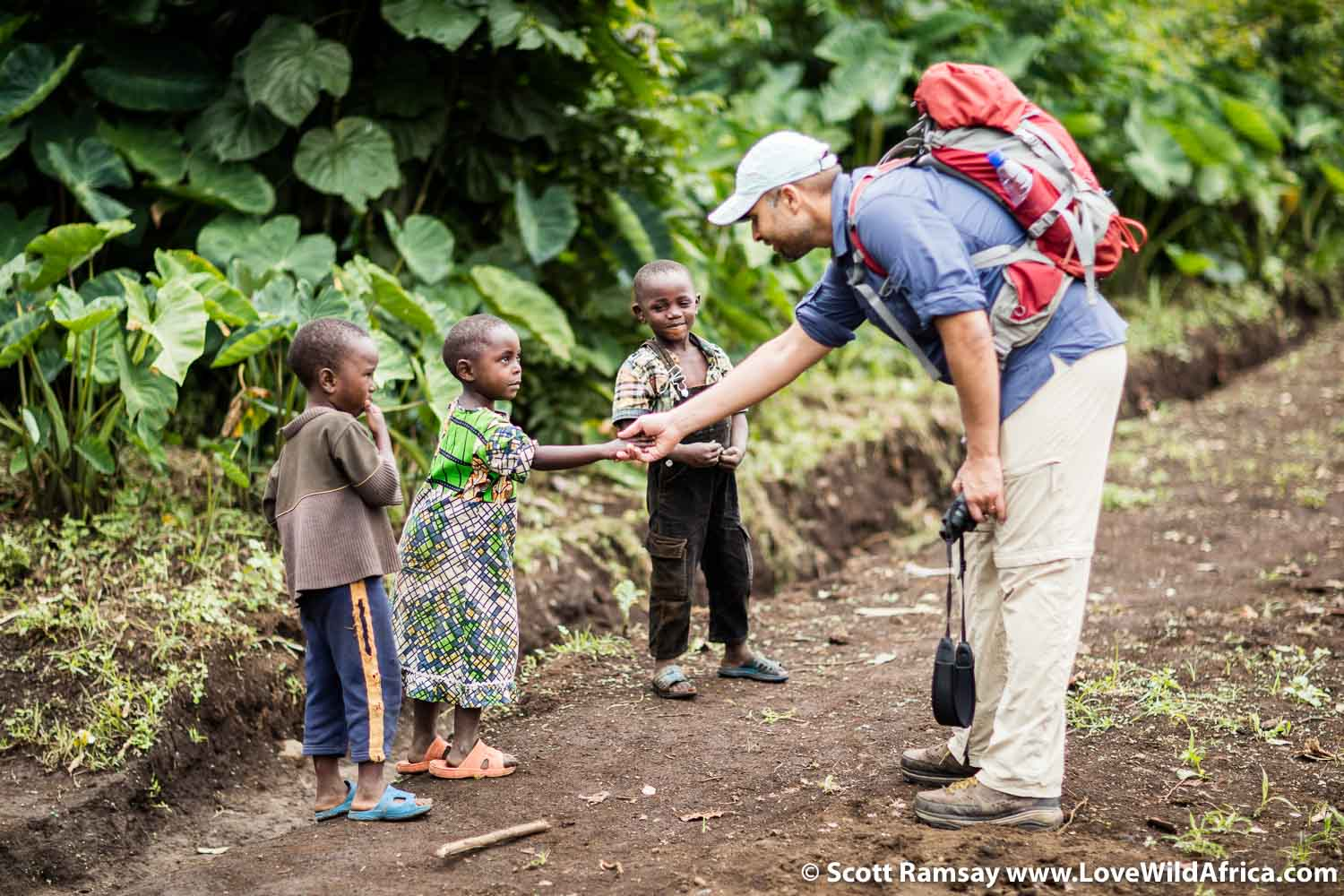 Despite the obvious dangers posed by militias and civil wars, gorilla tourism in Virunga has already drawn thousands of visitors to eastern DRC.