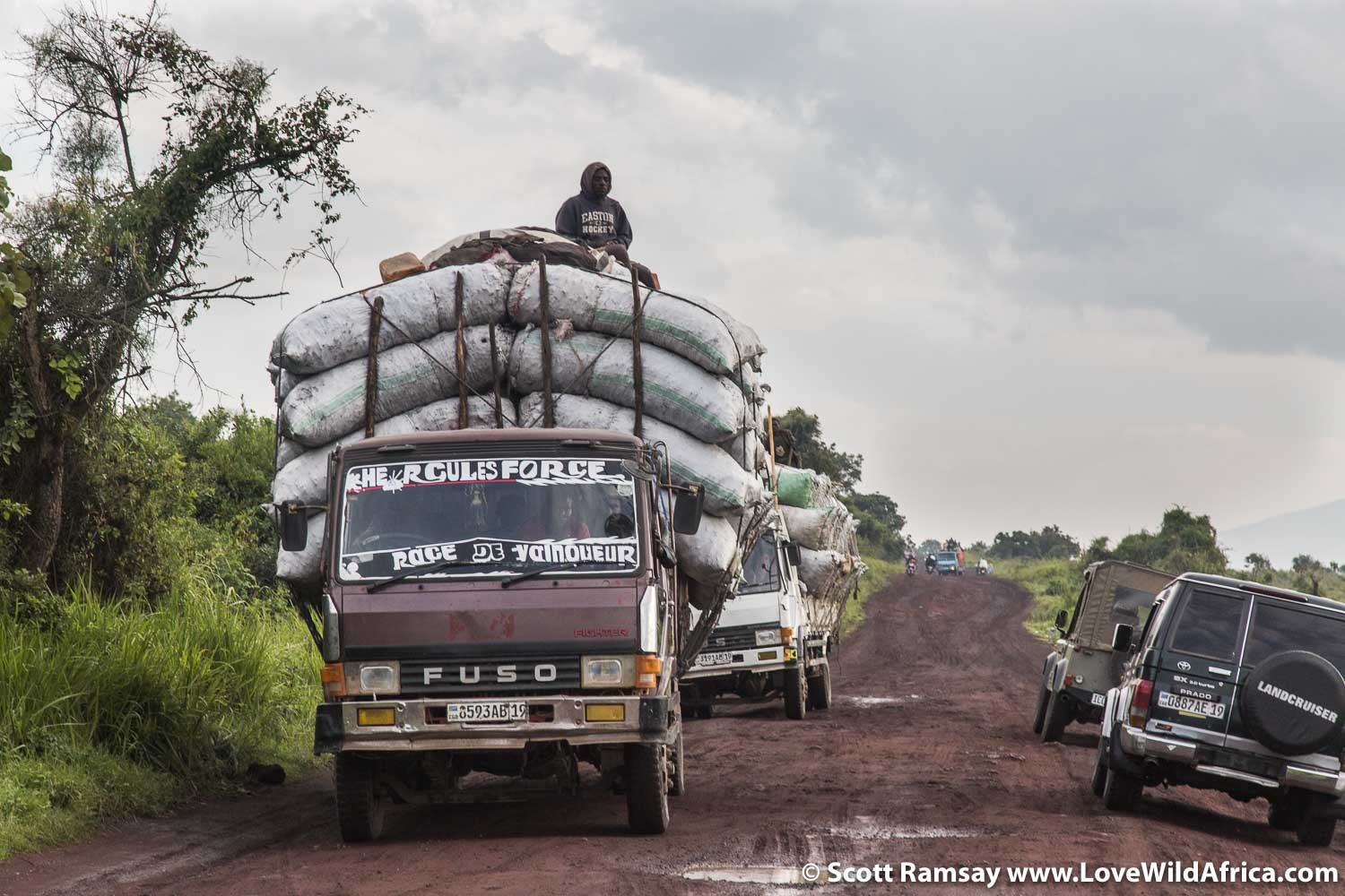 Trucks carrying charcoal on the road from Rumangabo to Goma.