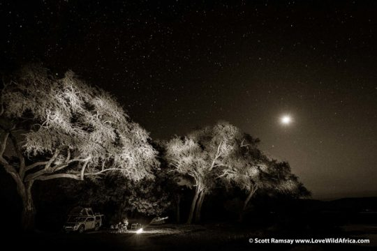Full moon nights - Mana Pools National Park - Zimbabwe