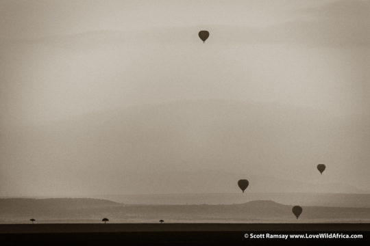 Hot air balloons - Maasai Mara - Kenya