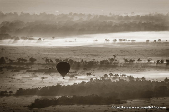 Hot air balloon at dawn - Maasai Mara - Kenya
