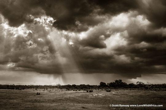 Thunderstorm - Hwange National Park - Zimbabwe