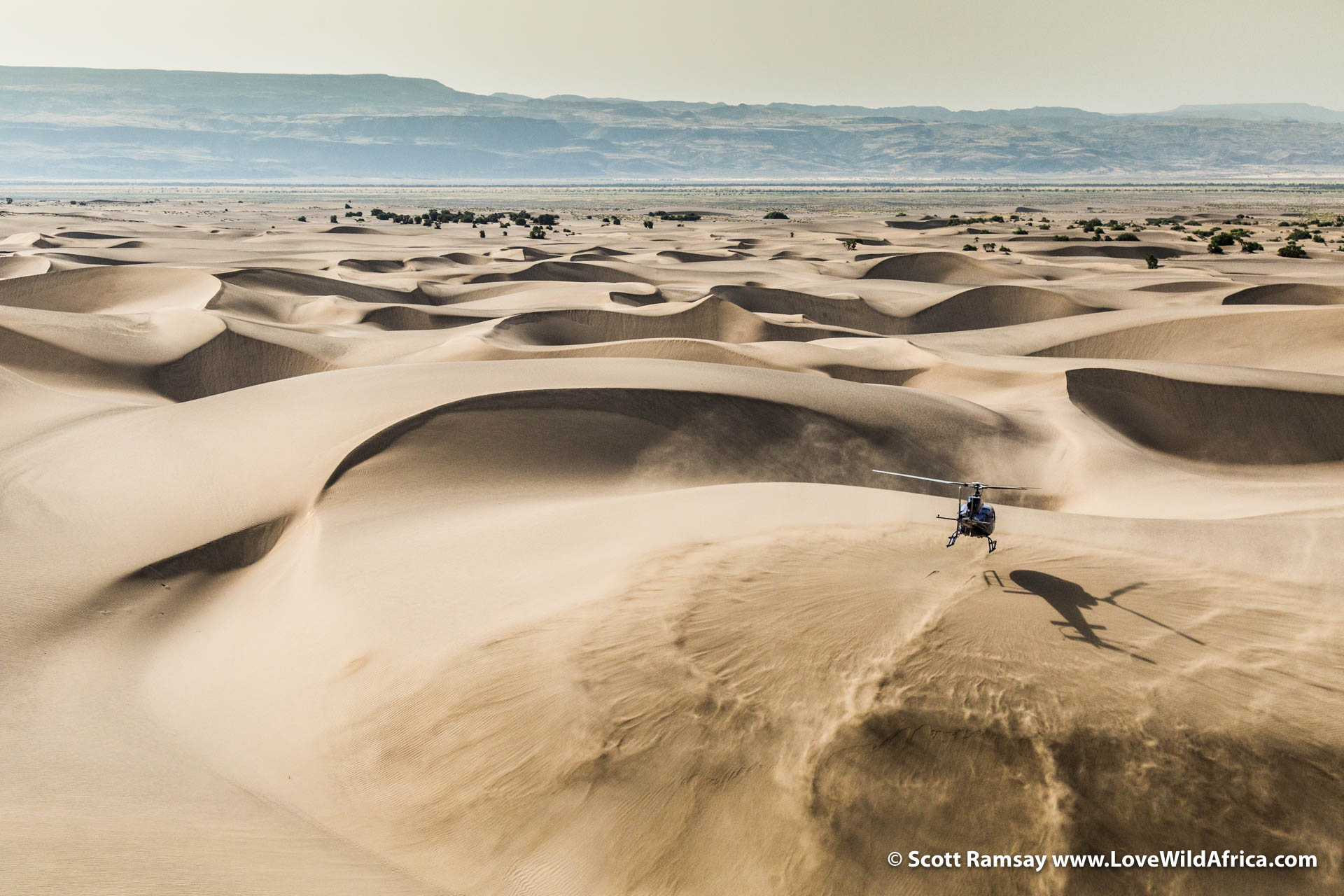 Sarah Snell of Tropic Air lands the Eurocopter on a sand dune, while we watch them from our little Robinson R44.