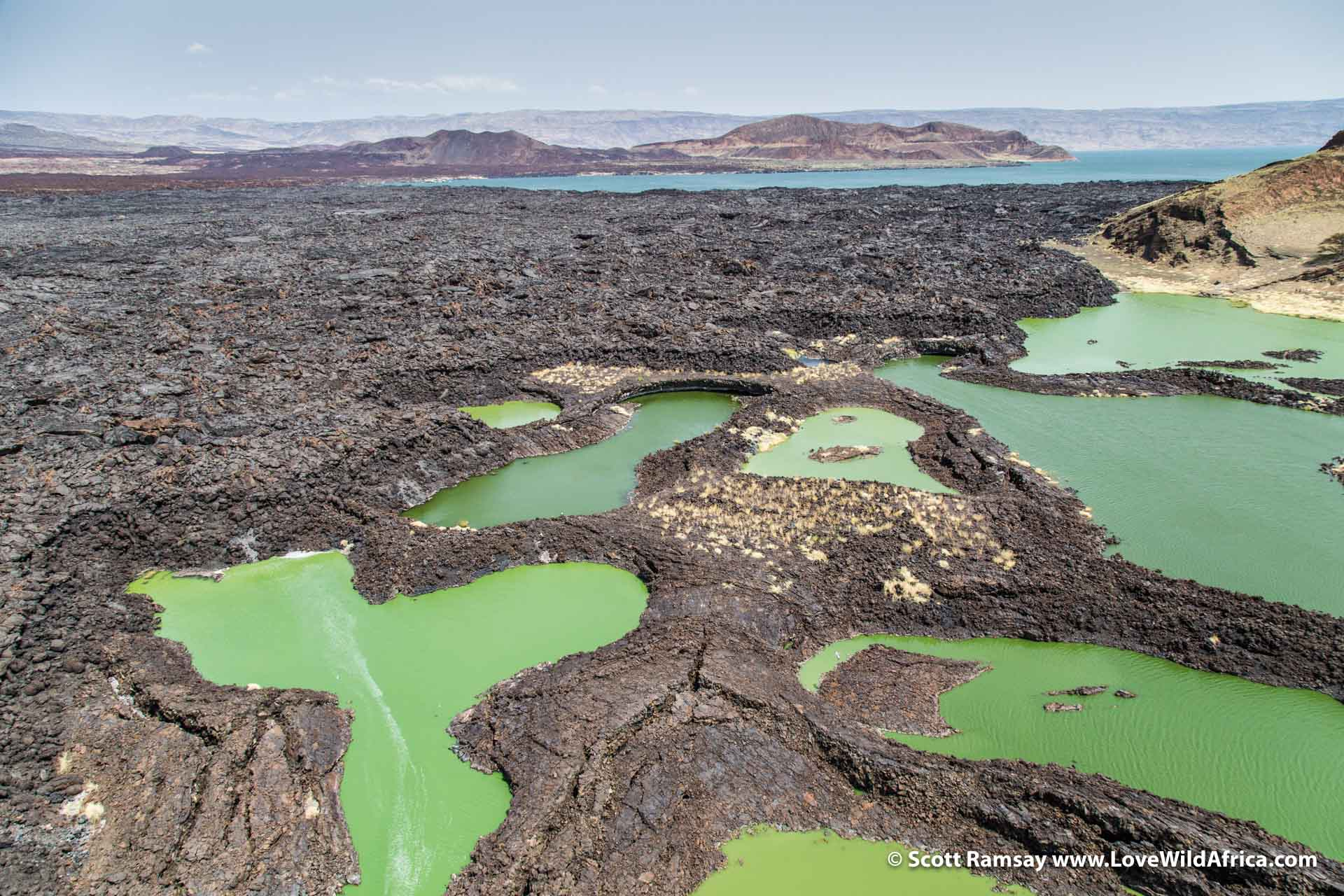 The trapped waters of the lava lakes are green because of algal growth, while the turquoise waters of Lake Turkana lie in the background...