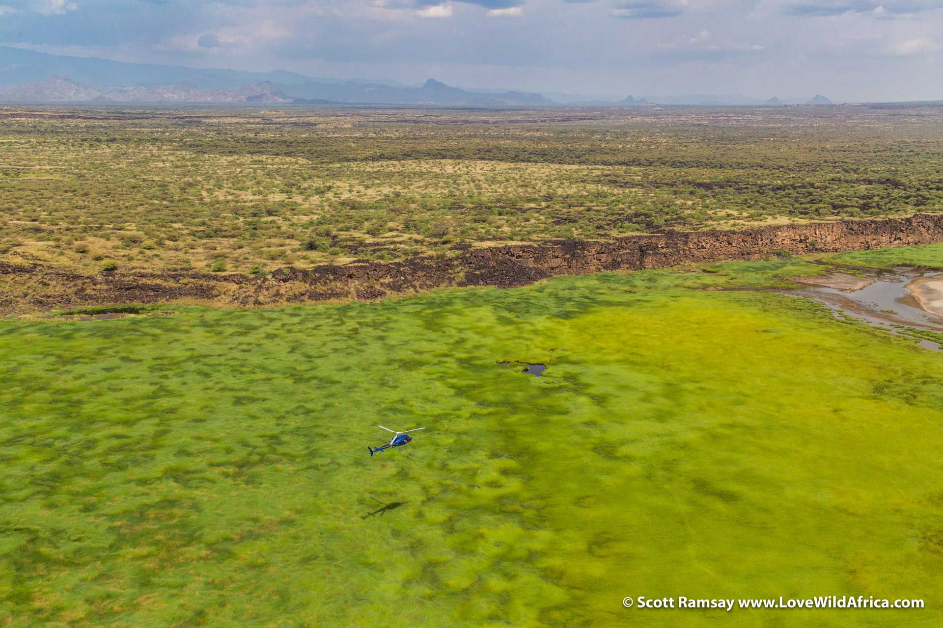 Continuing our journey south, flying over the green marshlands near the relevantly-named Croc Pools, where we did see some sizeable reptiles patrolling the waters.