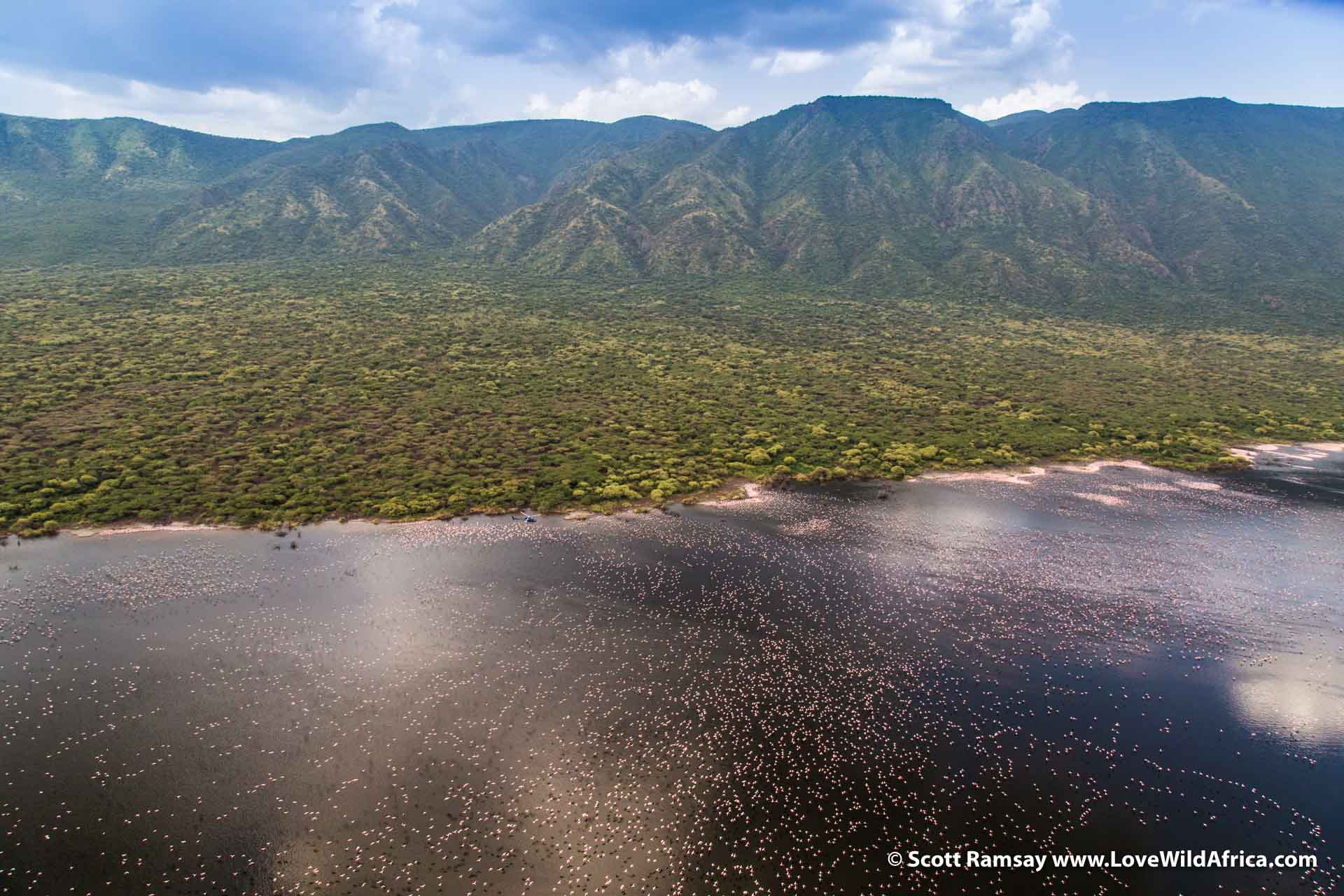 Perhaps my favourite sight of the day...flying over Lake Bogoria, and a welcome return to the colour green. And of course, those thousands and thousands of pink dots are lesser flamingos. Can you spot the blue chopper?