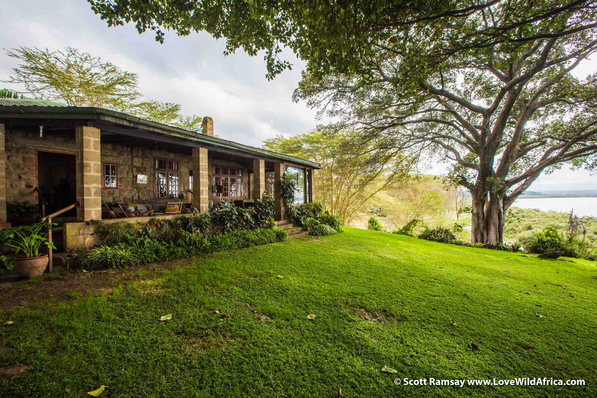 Ajabu House on shores of Lake Naivasha, where our helicopter safari ended. This is the Kenya that most people know...green, well-watered, comfortable and generally lovely to be in. The contrasts between the south of the country and the north are extreme.