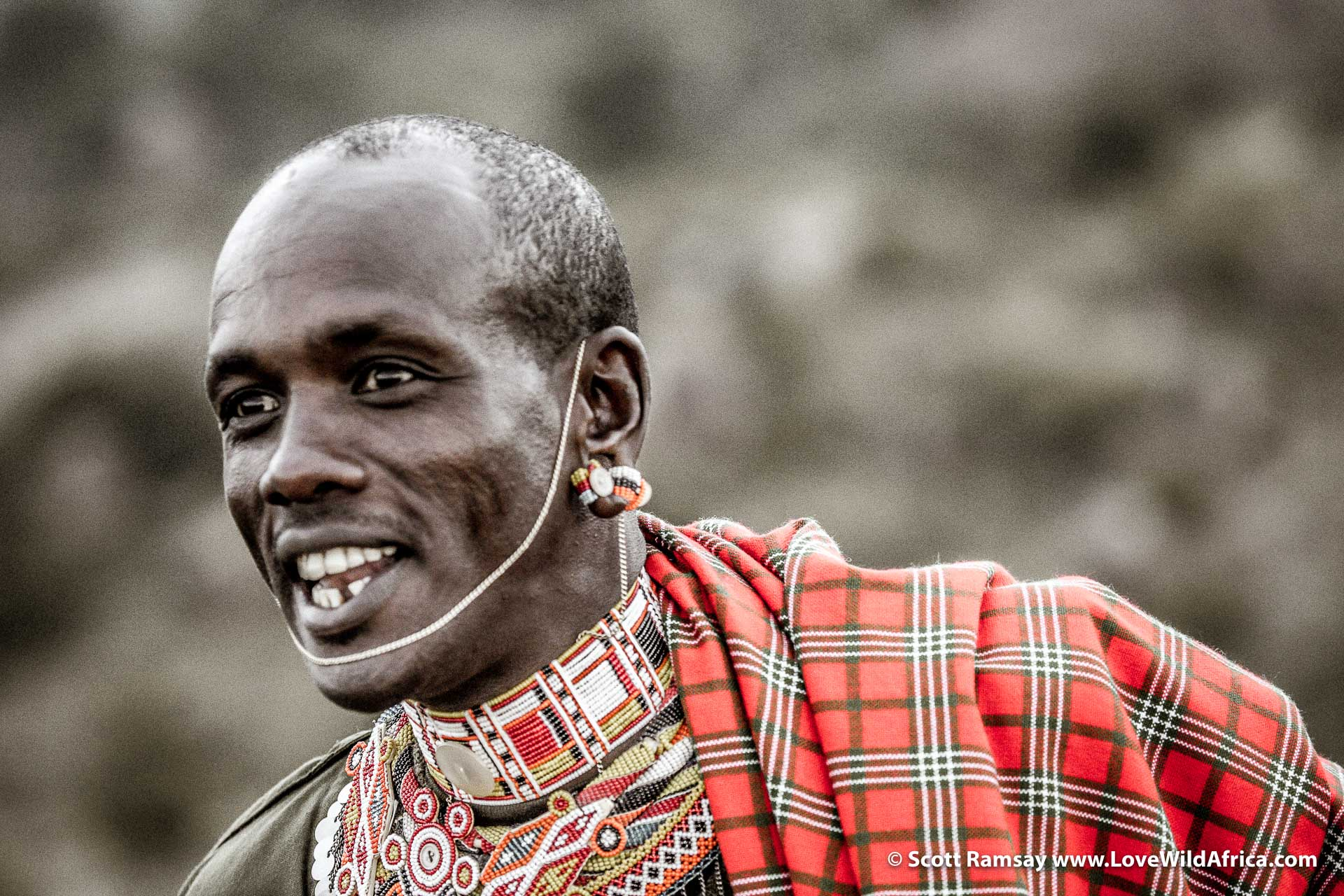 This is Sessen, a Samburu superhero, and also friend and ally of the Carr-Hartleys. He was everpresent during our safari, and kept a close eye on wandering children in case hungry lions or grumpy buffalo came close.