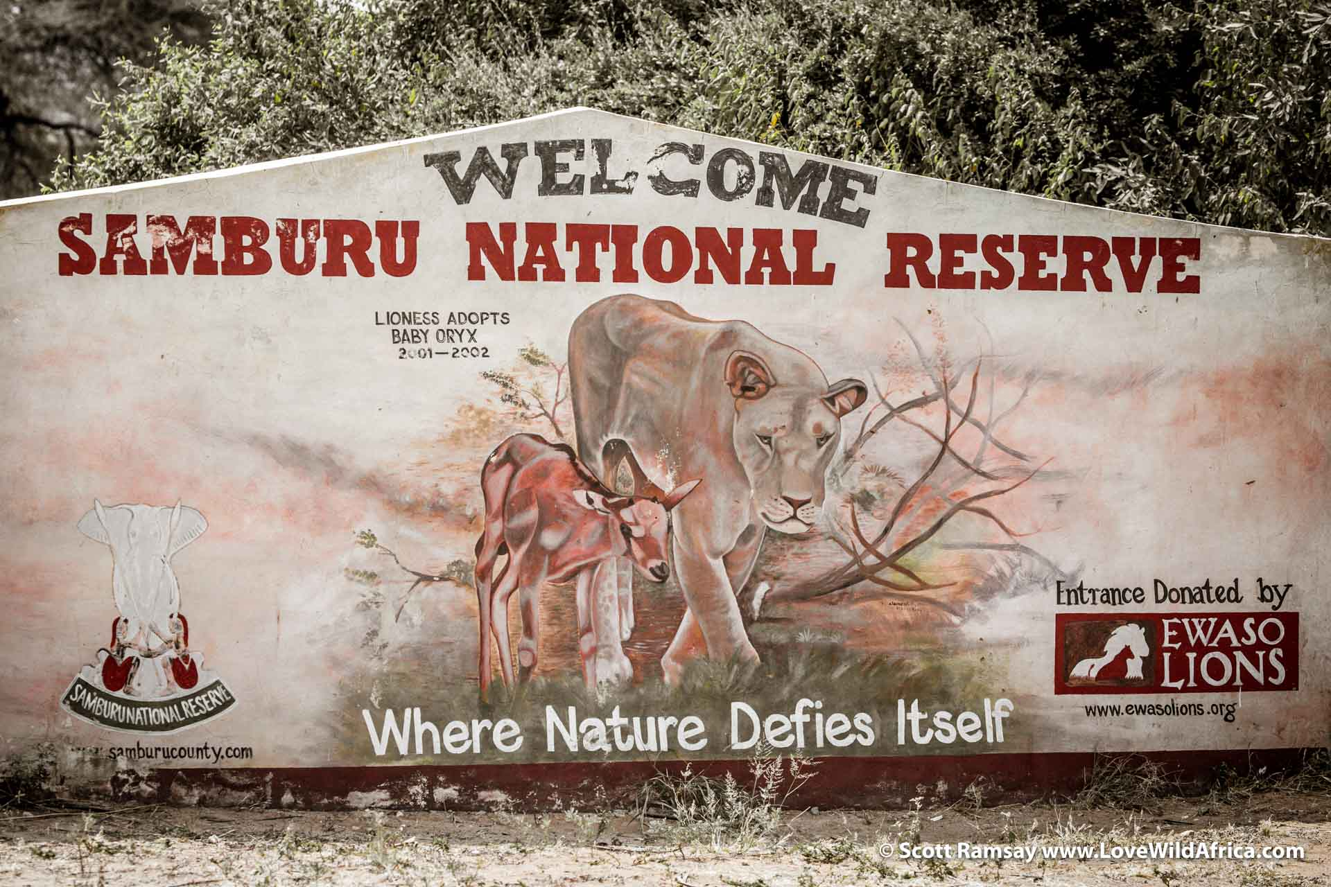 The welcome sign at Samburu National Reserve, with a painting of Kamunyak, a lioness who adopted several oryx calves, and protected them for a while.